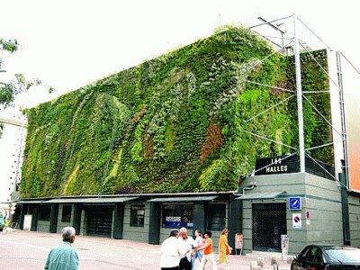Mur v g tal d co mur v g talis for Muro verde sistema constructivo